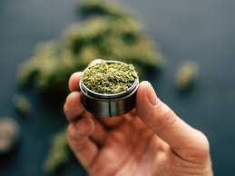 Online dispensary the best option to find different strains of herbs
